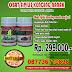 Obat Sipilis Alami De Nature Indonesia