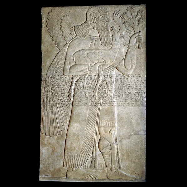 Nimrud (antigua Kalhu), el norte de Irak Neo-asirio, 883 a 859 aC  Espíritu protector  Este alivio, tallado en alabastro, era uno de un par que protegía la entrada a los apartamentos privados de Asurnasirpal II (reinó desde 883 hasta 859 aC), en su palacio en Kalhu, la capital de Asiria. La protección de la entrada de un edificio de uso de la magia era una tradición de larga data en Mesopotamia. Imágenes de criaturas sobrenaturales eran a veces enterrados debajo de las puertas o la creación en las entradas de los palacios y templos. Su fuerza mágica fue pensado para ahuyentar a los demonios del mal.  La figura de un hombre con alas puede ser la criatura sobrenatural llamado Apkallu en los textos cuneiformes. Lleva una falda escocesa con borlas y un manto de flecos y bordados. Su bigote rizado, el pelo largo y la barba son típicos de las cifras de esta fecha. En todo el cuerpo funciona de Assurnasirpal 'Standard Inscripción', que registra algunos de los títulos y logros del rey, y se repite en muchos de sus relieves en piedra. La inscripción se redujo después de la figura fue tallada, ya que algunos de los detalles de la decoración en el vestido han sido cincelado a través. La importancia de la cabra y la oreja de maíz gigante de que la figura lleva no se conoce.