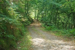 Lena, descenso hacia el valle del Naredo desde Los Cabrios
