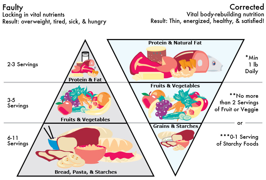 Natural Healing Tools Corrected Food Pyramid