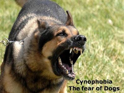 Cynophobia
