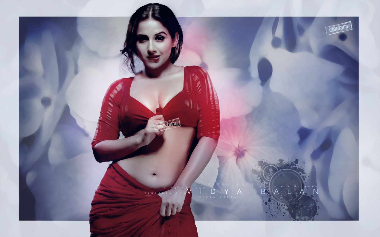 Vidhya balan sexy pictures