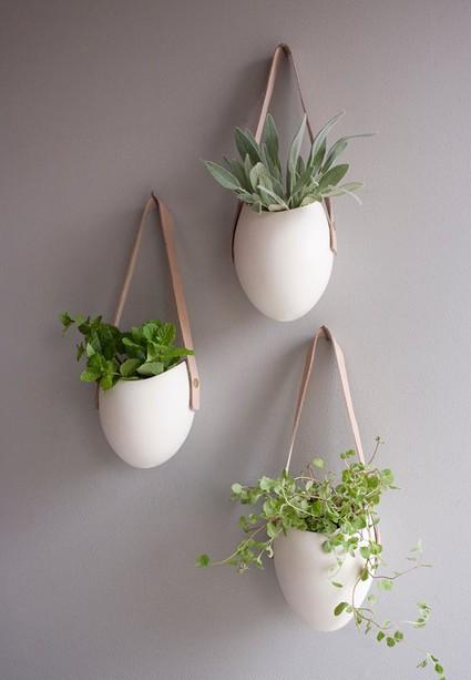 Du design pour les plantes d 39 int rieur - Plante d interieur design ...