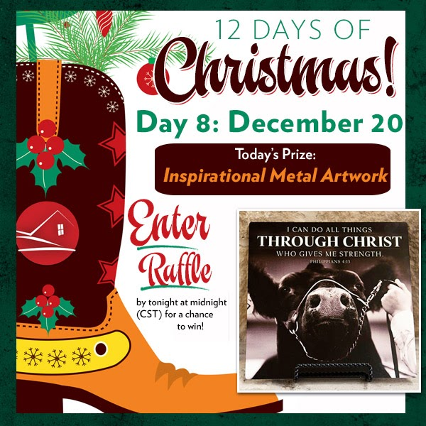 Ranch house designs blog day 8 of rhd 12 days of giveaways for Ranch house designs blog