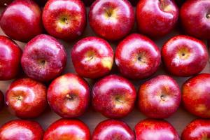 List-Of-Healthy-Foods