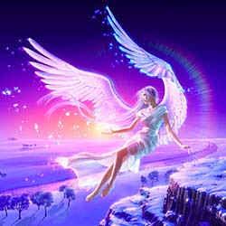 Amor, asas para o céu