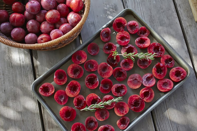 Oven Roasted Plum Jam with Rosemary Recipe