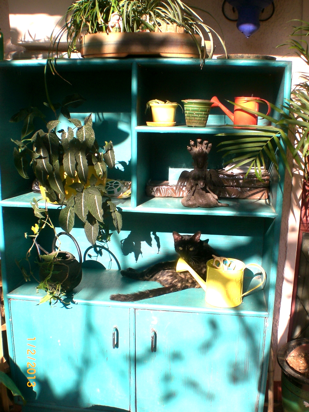 Seema and Rakesh repurposed teal shelf home Bangalore home tour