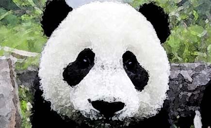 algoritm Google Panda