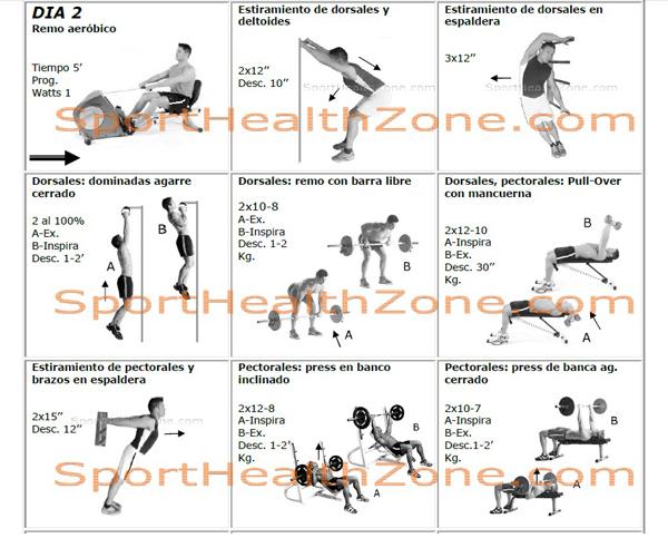top rutinas de ejercicios con pesas images for pinterest