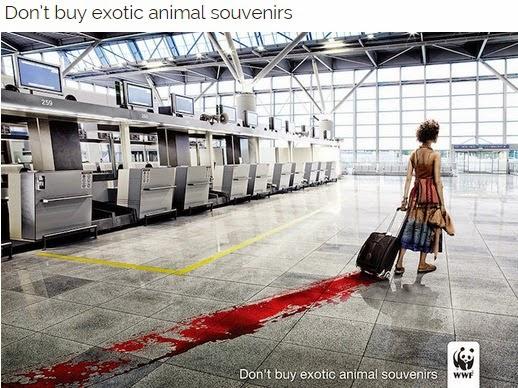 sosyal-sorumluluk-yaratici-tasarimlari-hayvanlari-koruma