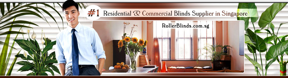 Singapore Blinds & Curtains