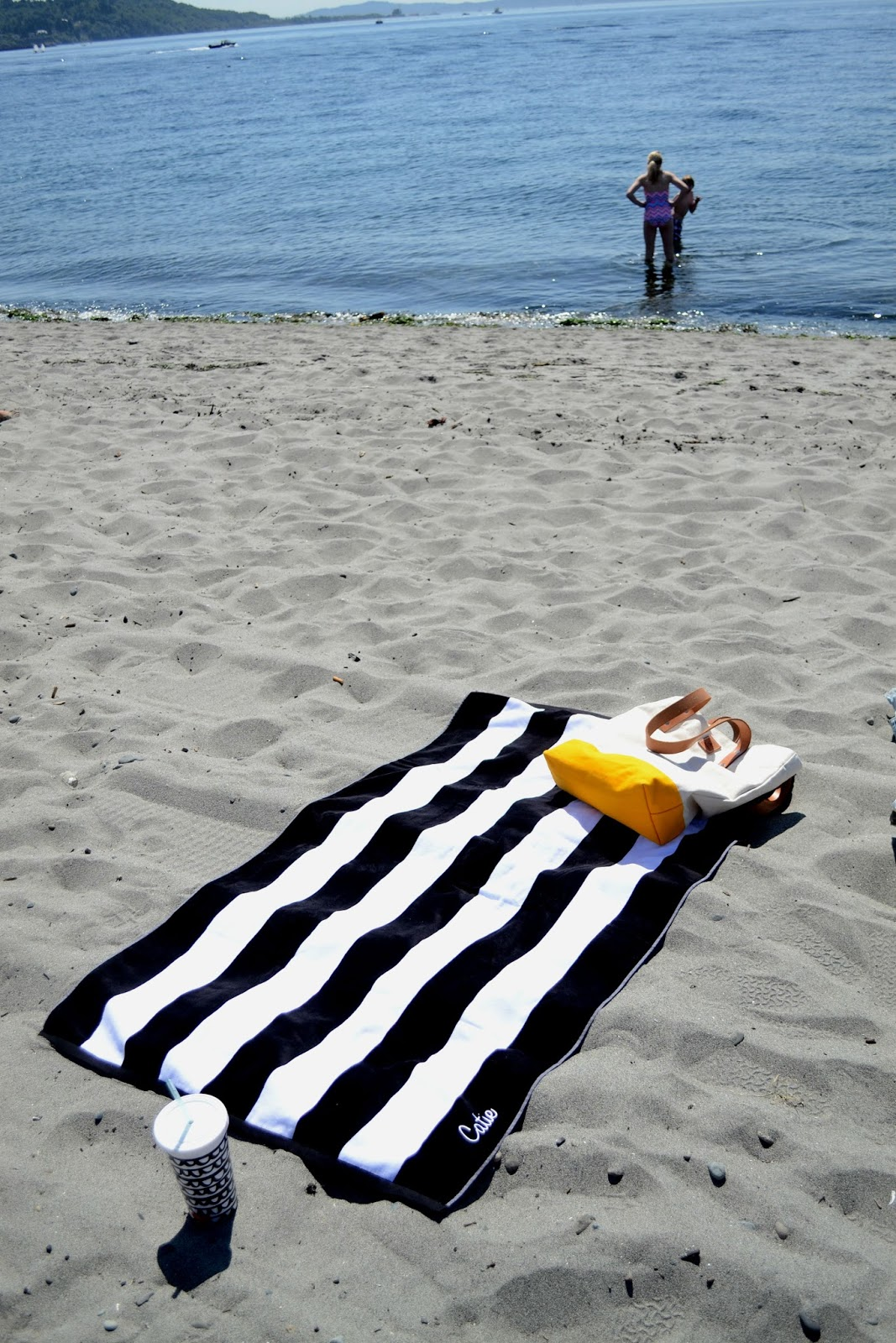 stripes, golden gardens, beach, sun, summer, swimming, tarboo, tote bag, seattle