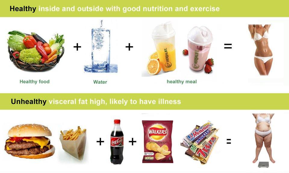 27 Makanan Pembentuk Otot Perut Paling Efektif
