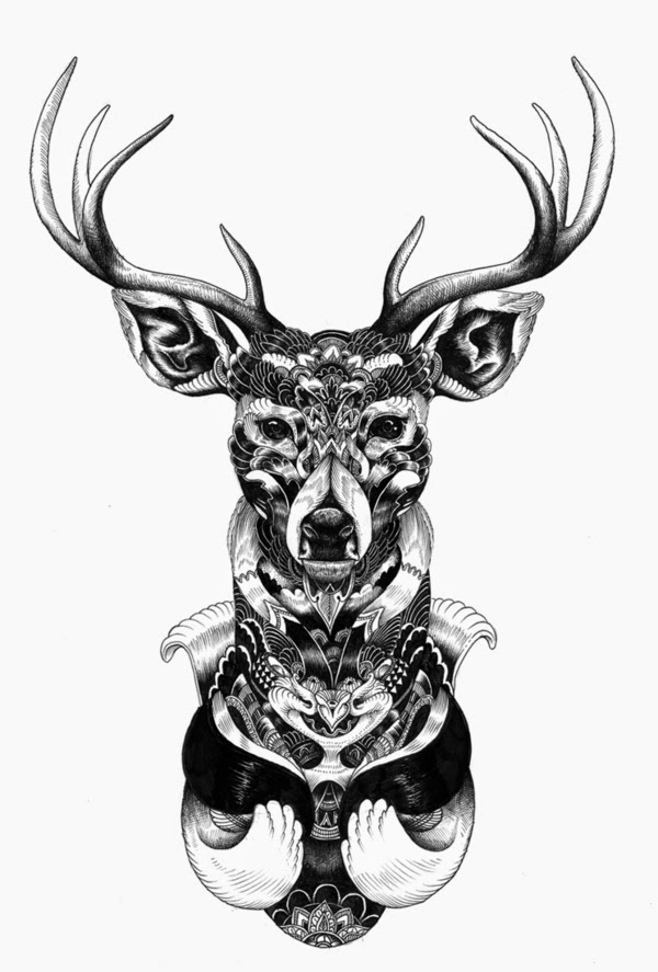 08-Iain-Macarthur-Precision-in-Surreal-Wildlife-Animals-Drawings-www-designstack-co