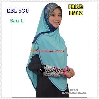 EBL530