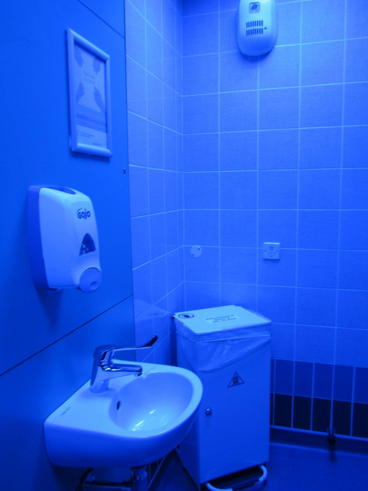The McCall Clan The Rotunda Hospital - Blue lights in bathroom