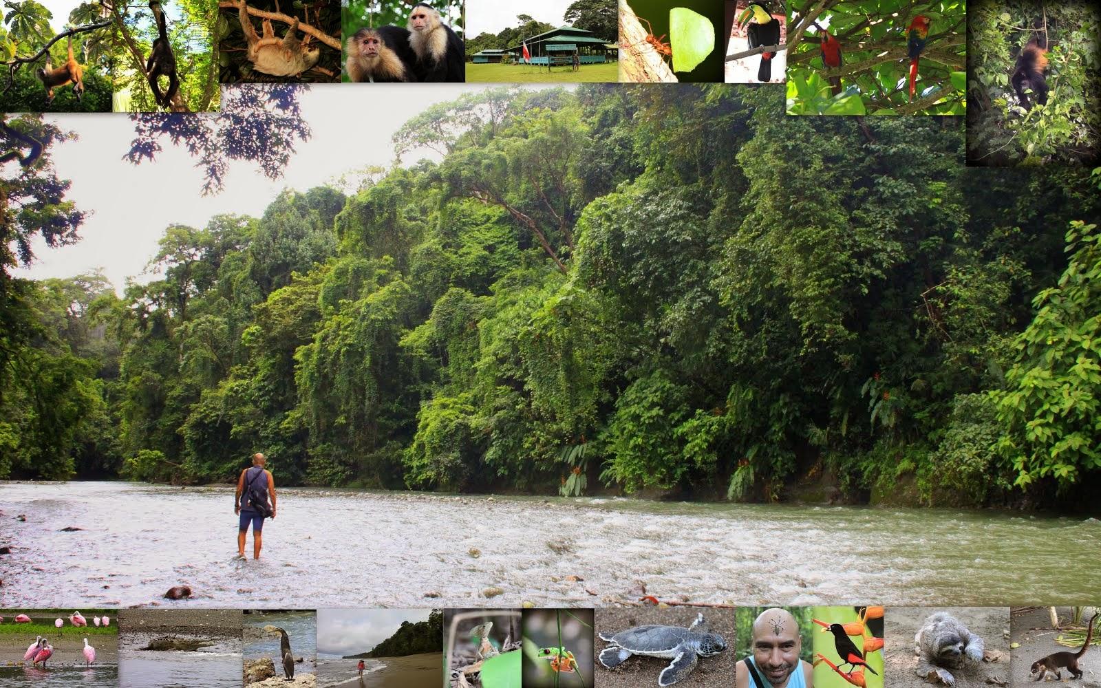 COSTA RICA 1.9.2013