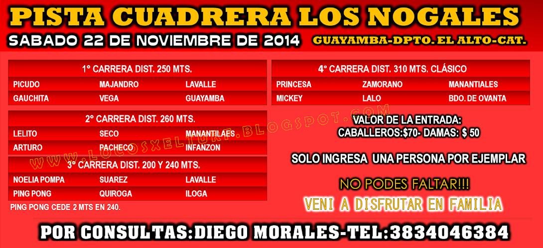 22-11-14-PROG-HIP. LOS NOGA