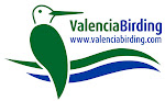 Guided Birdwatching Tours