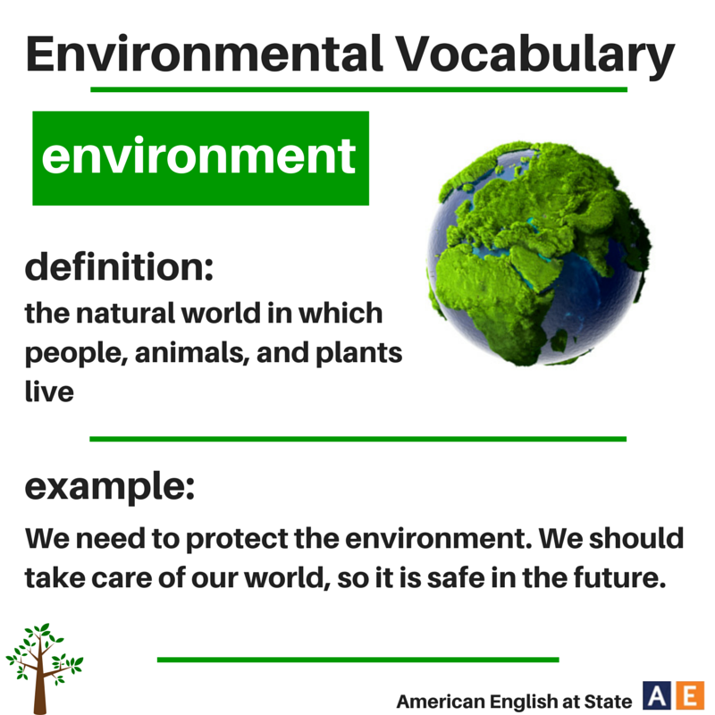 environmental essay in english Our environment is getting worse day by day, and we are suffering for other peoples and our mistak.
