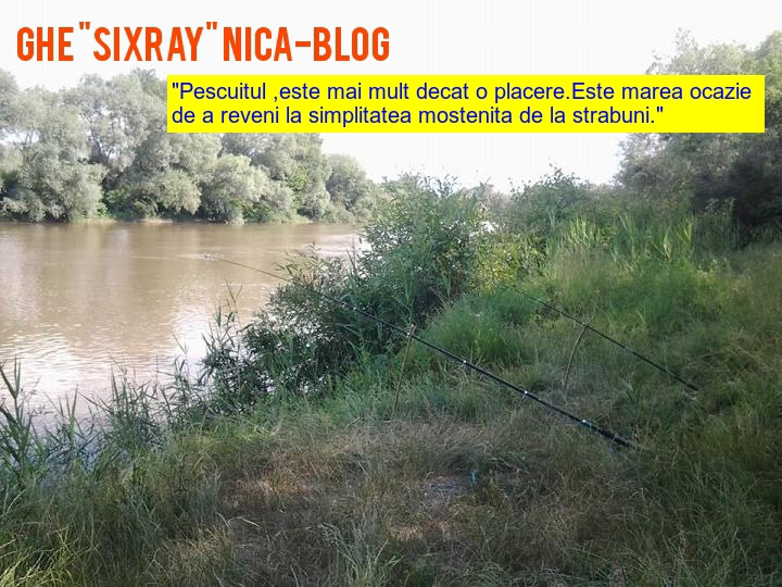 "Ghe ""Sixray"" NICA-Blog"