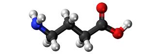 Asam gamma aminobutirat, Fungsi, Manfaat, Sumber, Dosis Dan Efek Samping
