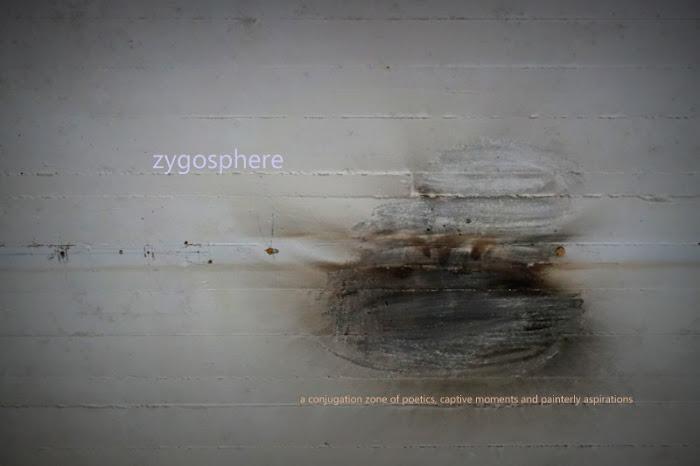 zygosphere