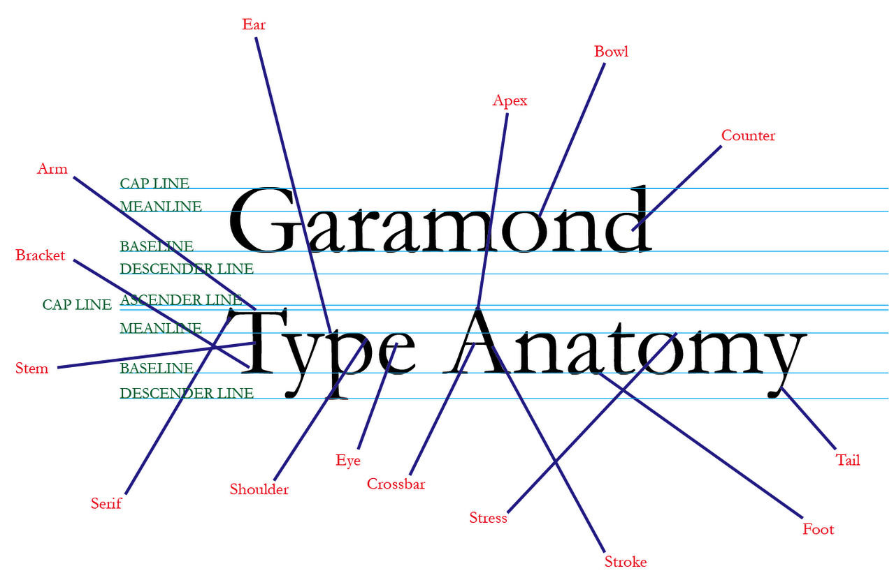 Art109 Miami The Anatomy Of A Letter Of Type A Glossary And