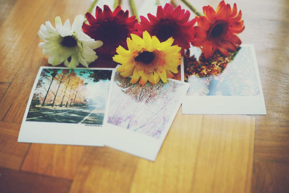 printic photos on wood floor