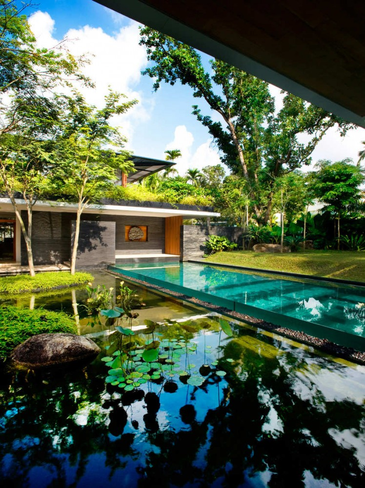green+roof+house+pool+11 - Get Most Beautiful Best Small House Designs In The World Pictures