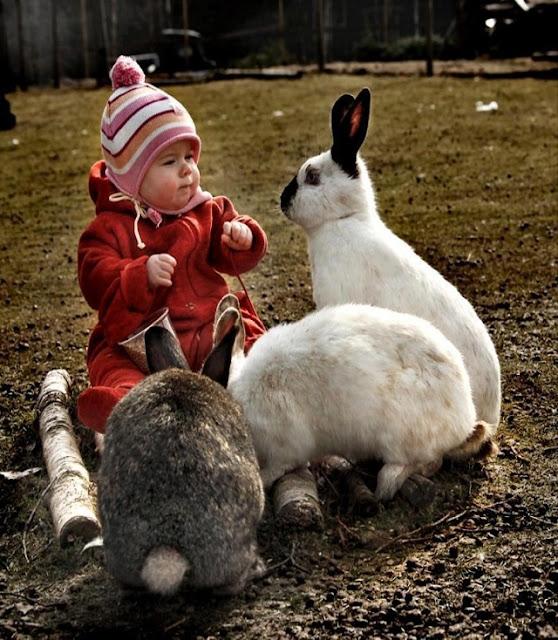 Photo d'un joli bébé qui joue avec des lapins