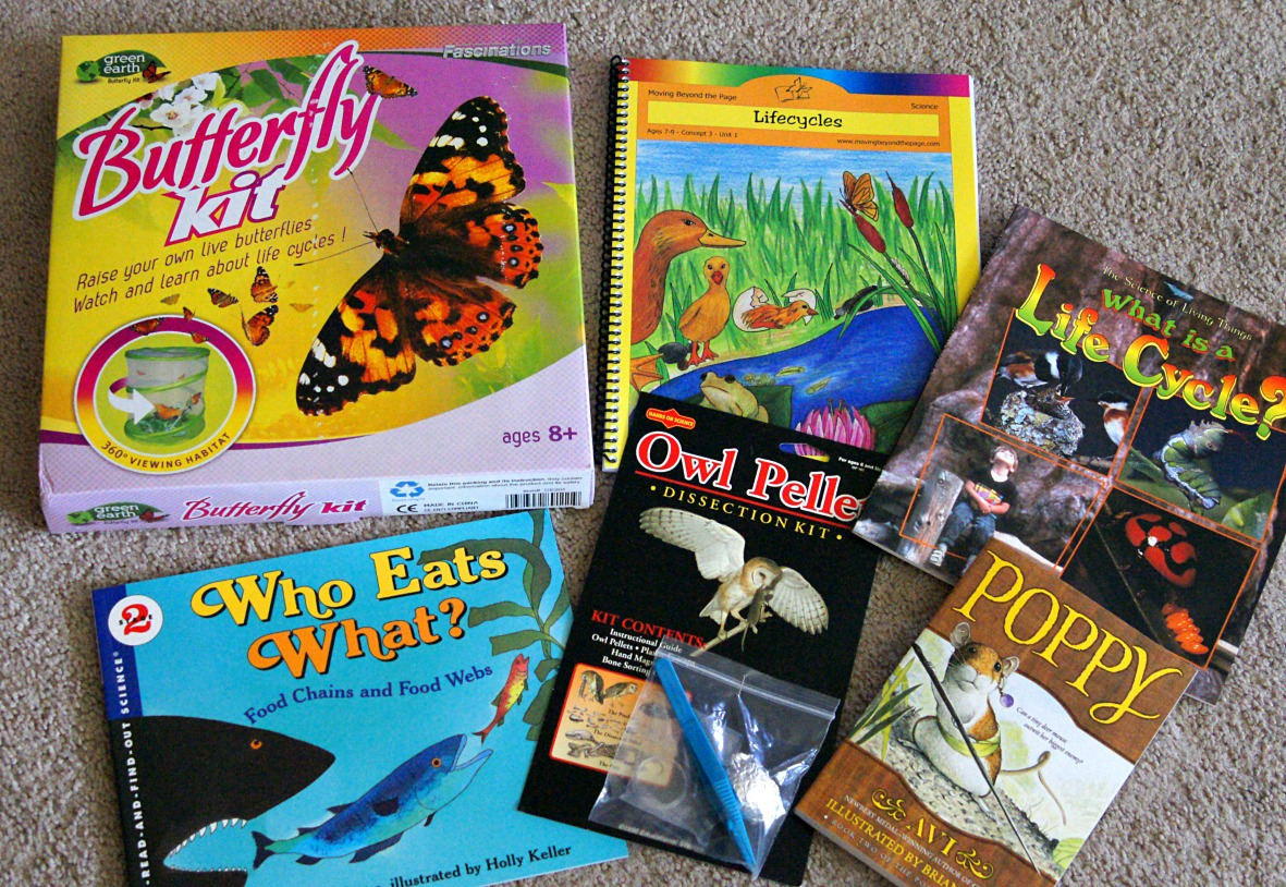 purdue owl literature review