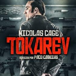 Poster Tokarev 2014