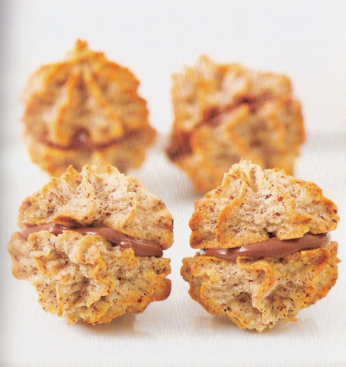 Biscotti che passione i diversi tipi di biscotti - Diversi tipi di trecce ...