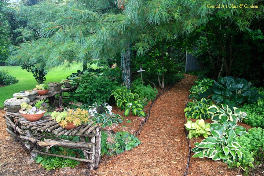 Best Plants Under A Pine Tree : Another area which has many hostas planted is to the south and east of