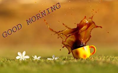 cup-drink-tea-splash-nature-flowers-photo-wallpaper-1680x1050
