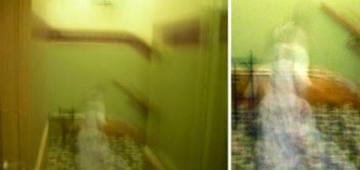 http://dailytorn.blogspot.com/