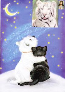 Amigos del Tigre