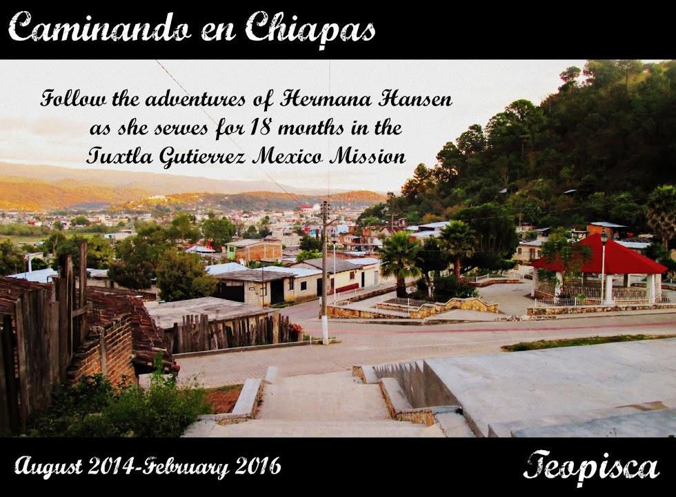 Caminando en Chiapas