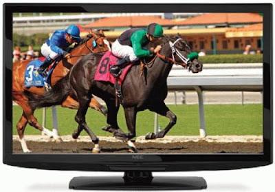 NEC E-Series E461 and E551 LCD Displays Review