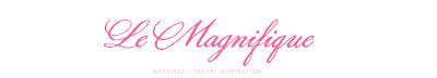 Le Magnifique Blog