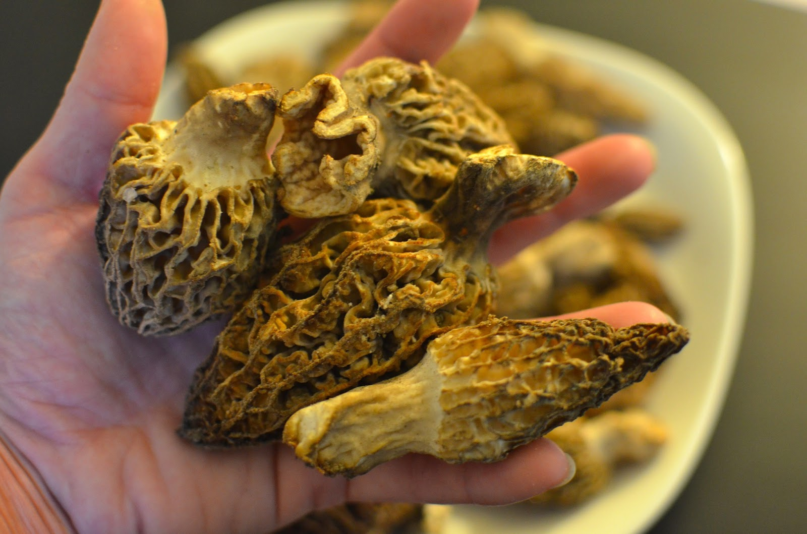 how to cook fresh morels
