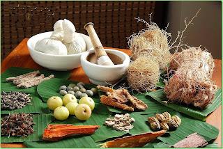 Ayurvedic Herbs - Immunity Boosters