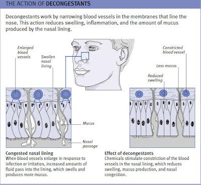 Action of Decongestant