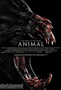 Animal – Full HD 1080p