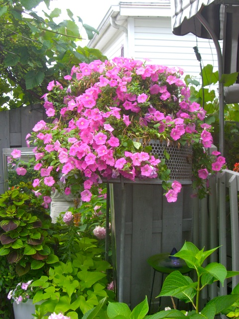 40 ideas sobre decoraci n exterior en jardines con flores - Banco para jardin exterior ...