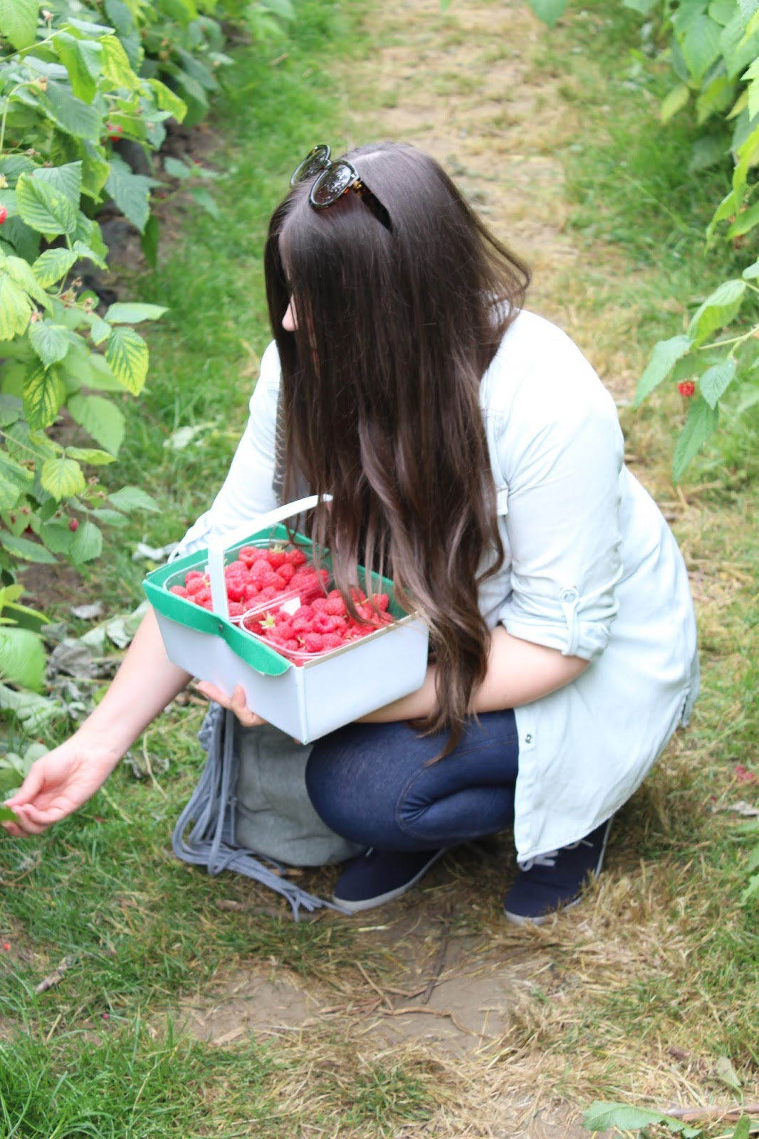Summer: Berry Picking