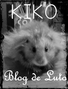 kiko, em memoria
