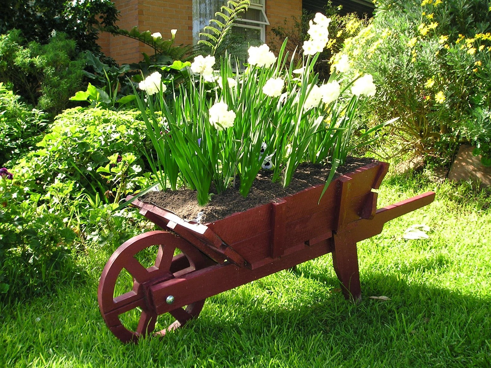 Wooden Wheelbarrow Planter With Free Plans Instructions Tea Tree